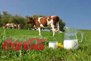 Coca-Cola-ն կաթի սեփական ապրանքանիշ կթողարկի