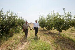 Սերգո Կարապետյանն Արագածոտնի մարզում հետևել է բերքահավաքի ընթացին
