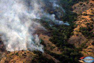 Հրդեհ Խոսրովի Անտառում. շուրջ 200 հա գիհի ծառատեսակներ են այրվել