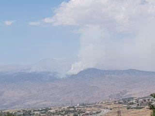 Բյուրականի հարակից անտառում այրվել է մոտ 20 հա բուսածածկ և անտառածածկ տարածք