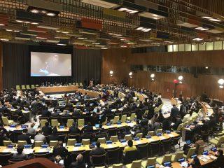 Հայաստանն ընտրվել է ՄԱԿ-ի Տնտեսական և Սոցիալական հարցերով Խորհրդի անդամ