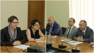 Արթուր Գրիգորյանը և Լայլա Բաշանը քննարկել են Վրաստանի հետ 400 կՎ էլեկտրահաղորդման գծի կառուցման ընթացքը
