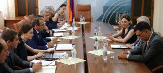 Արծվիկ Մինասյանը հանդիպել է Հայաստանում ԵՄ պատվիրակության ղեկավար, դեսպան Պյոտր Սվիտալսու հետ