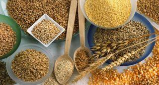 UN FAO․ պարենային մթերքների գնային ինդեքսը օգոստոս ամսվա համար կայուն է եղել