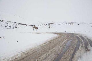 Ապարանի, Արթիկի և Հրազդանի ավտոճանապարհներին ձյուն է տեղում