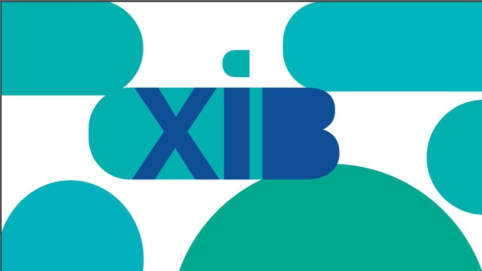 XiB. Նոր հարթակ` բիզնեսի գաղտնիքները բացահայտելու համար