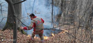 Վտանգավոր անտառային հրդեհը կասեցվել է Թեղուտի աշխատակիցների շնորհիվ