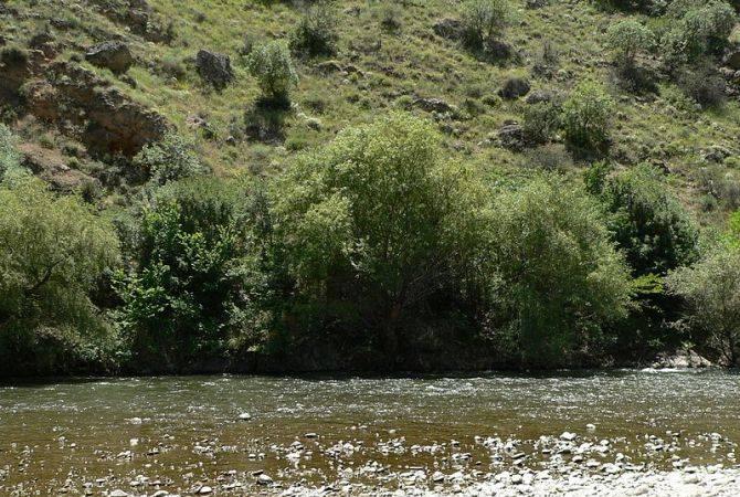 200 մլն դրամի դրամաշնորհ՝ գետերի ափապաշտպան անտառաշերտերի հիմնման համար