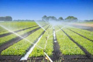 Արարատի և Արմավիրի մարզերում կիրականացվի ոռոգվող գյուղատնտեսության զարգացման ծրագիր
