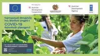 Մեկնարկում է ԵՄ «Կանաչ գյուղատնտեսության նախաձեռնություն Հայաստանում» ծրագրի մասնակիցների մրցույթը