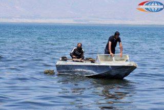 Արգելվում է Սևանա լճում բոլոր ձկնատեսակների արդյունագործական որսը՝ բացի սիգից