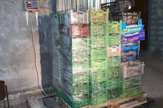 ԱԱԾ. բացահայտվել է Սևանա լճից 127 տոննա ձկների ապօրինի արդյունահանման հանցավոր սխեմա