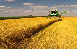 ՊԳԿ. Պարեն և գյուղատնտեսություն` վերադարձ նախկինից ավելի լավ կարգավիճակի