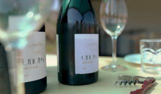 Ucom Թևութիկունք. «Մոմիկ» գինիներ և համտեսի սրահ