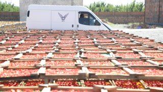Եվրոպական միության «EU4Business» ծրագիրն օգնում է հայկական ձեռնարկություններին հաղթահարել արտահանման դժվարությունները