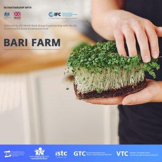 Ձեռներեց կանայք ներկայացնում են Bari farm-ը