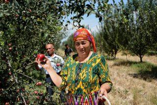 ՊԳԿ-ի գլխավորությամբ պատրաստված Եվրոպայի և Կենտրոնական Ասիայի պարենային անվտանգության և սնուցման 2020 թ. զեկույցը ներկայացնում է առողջ սննդակարգի արժեքը