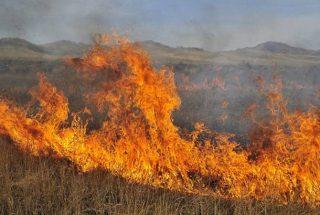 ՄԻՊ. Գեղարքունիքում ադրբեջանցի զինծառայողների գցած հրդեհներն այրում են մարդկանց պաշարած խոտը