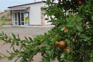Չորացրած միրգն ու բանջարեղենը բարելավում են Հայաստանի գյուղական բնակավայրերի դպրոցական սնունդը