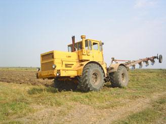 Мировые цены на кукурузу рухнули