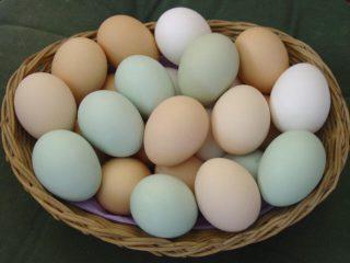 За год яйца подорожали почти на 40%