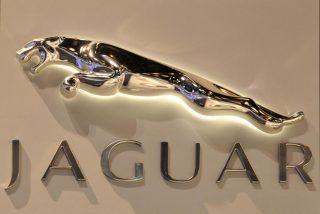 Jaguar Land Rover планирует построить завод в Бразилии
