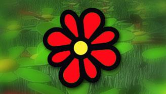 Число пользователей ICQ сократилось за месяц почти на 31%