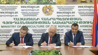 Конверс Банк: старт предоставления субсидируемых сельскохозяйственных кредитов