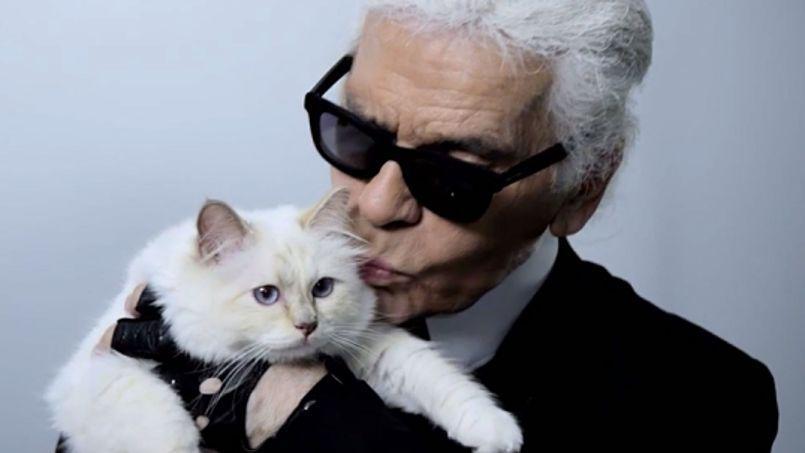 Chanel-ի տնօրեն Կարլ Լագերֆելդն ամբողջ ունեցվածքը կտակել է իր կատվին