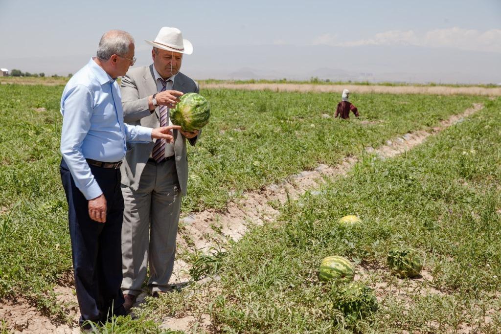 Սերգո Կարապետյանն այցելել է Արմավիրի մարզ