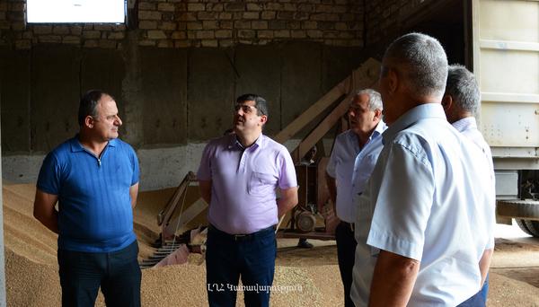 ԼՂՀ Վարչապետը ծանոթացել է հացահատիկի մթերման գործընթացին