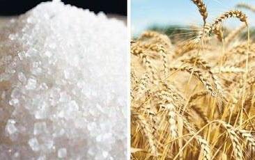 ԿԲ-ն կանխատեսում է ցորենի և շաքարավազի միջազգային գների նվազում