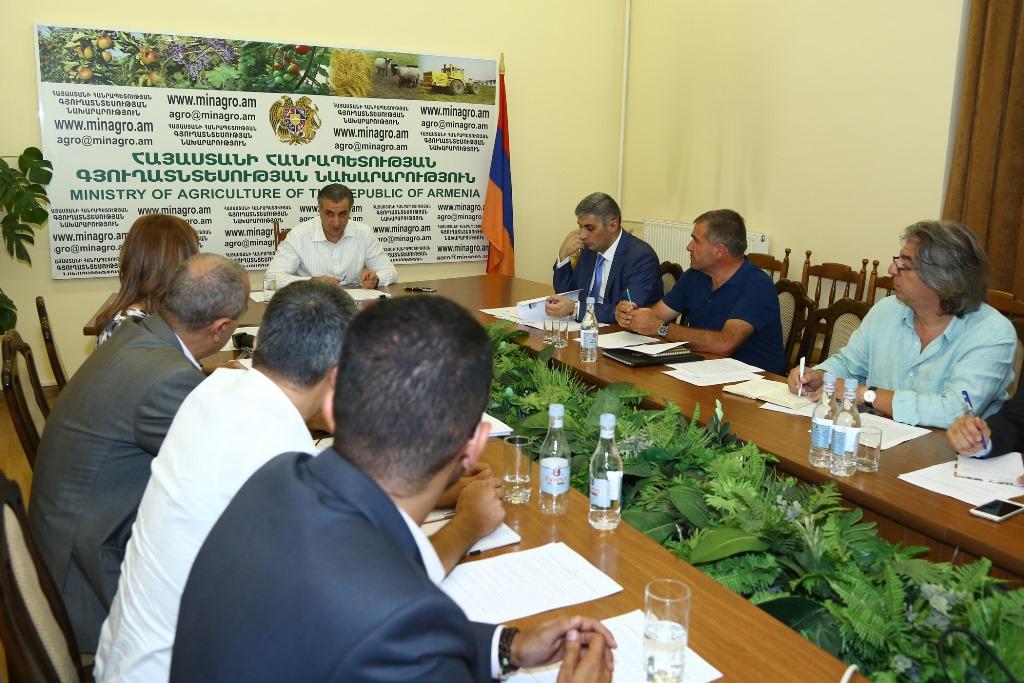 Քննարկվել են Հայաստանի խաղողագործության և գինեգործության հիմնադրամի առաջիկա ծրագրերը