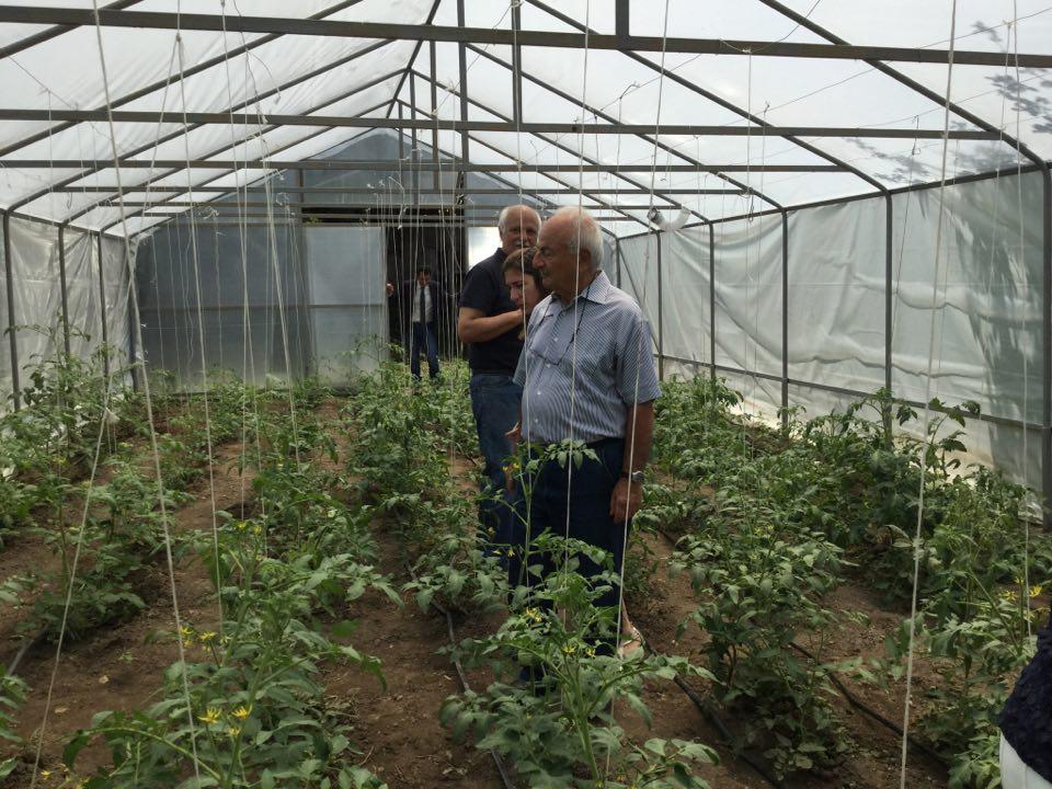 Արգենտինահայերի ֆինանսավորմամբ Տավուշում բացվեց 100-րդ ջերմոցը