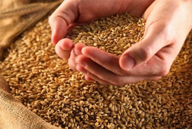 Վրացական երկաթուղին, նախնական պայմանավորվածությամբ, զեղչային համակարգ կկիրառի Հայաստան ներկրվող ցորենի համար