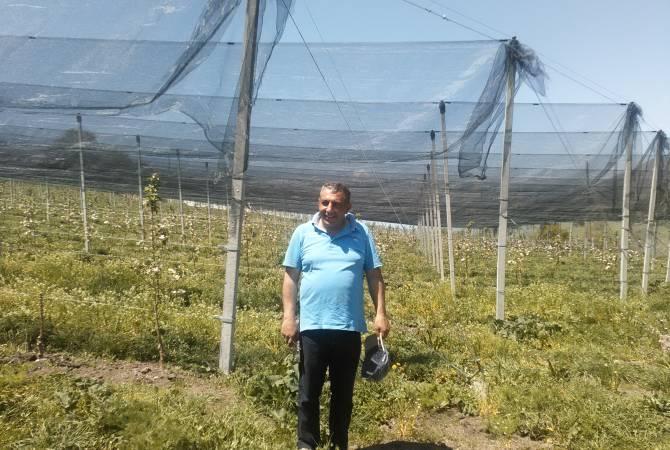 Մարտունի գյուղում ստեղծված խնձորի ինտենսիվ այգին այս տարի տալու է իր առաջին բերքը