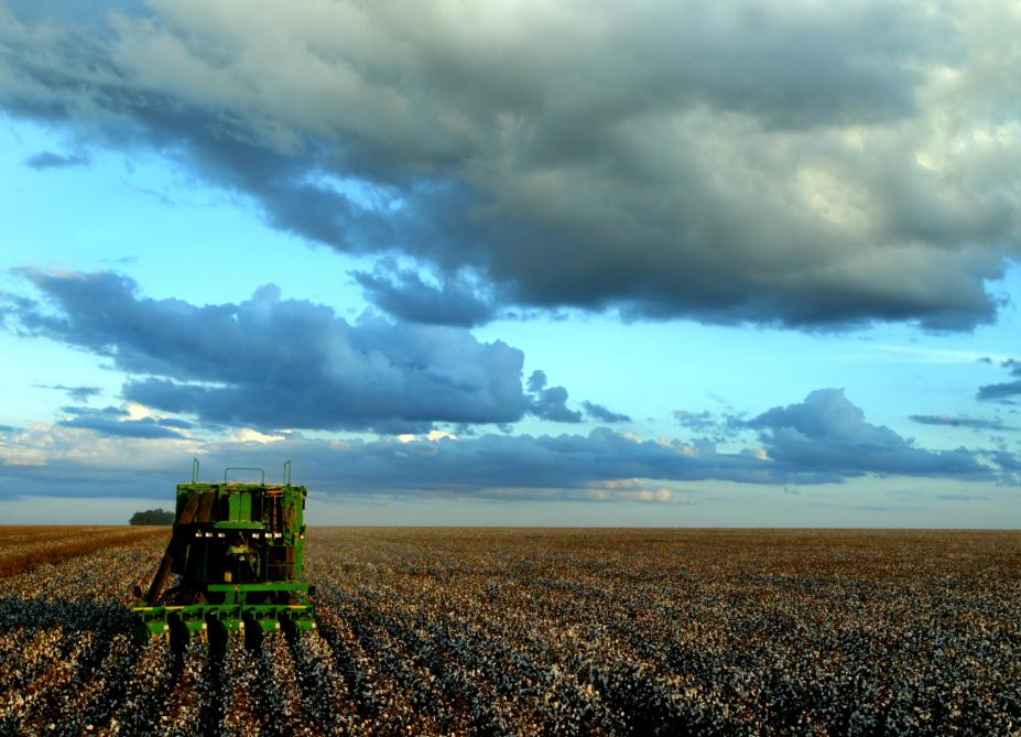 Հայաստանի գյուղատնտեսության ապագան կոոպերատիվներն են